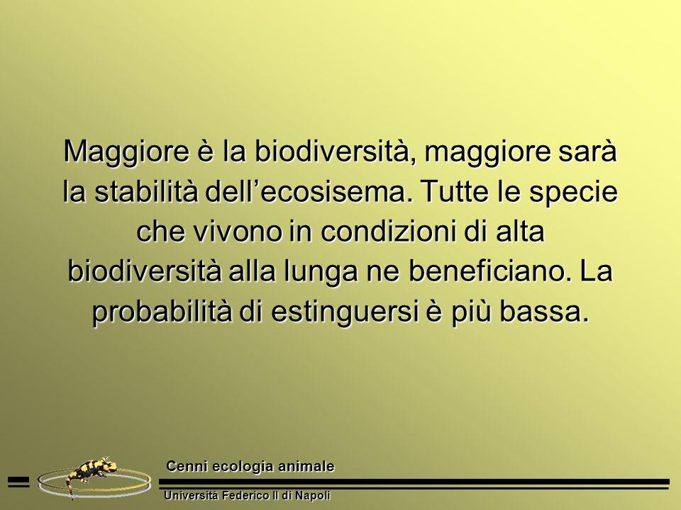 Maggiore è la biodiversità, maggiore sarà la stabilità dell'ecosisema
