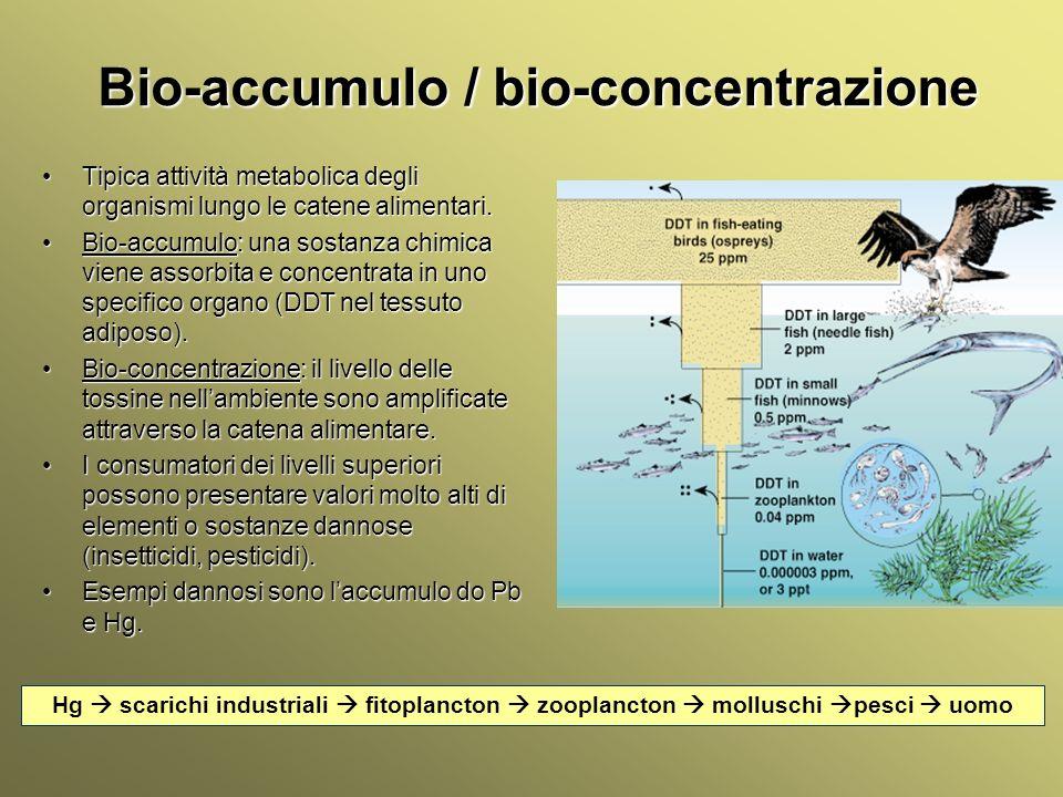 Bio-accumulo / bio-concentrazione