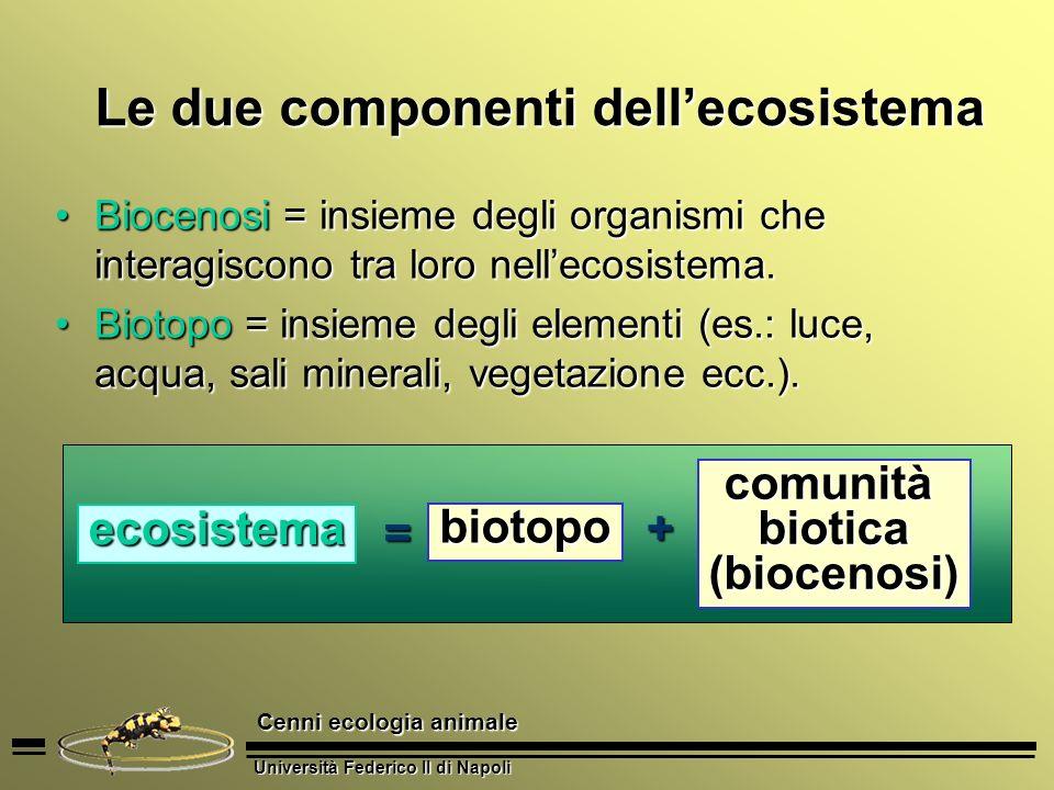 Le due componenti dell'ecosistema