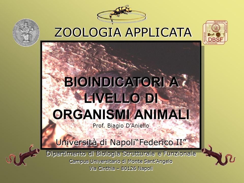 BIOINDICATORI A LIVELLO DI ORGANISMI ANIMALI