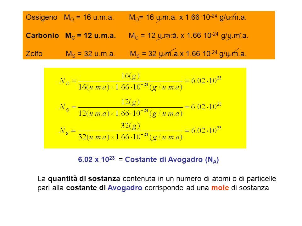 Ossigeno MO = 16 u.m.a. MO= 16 u.m.a. x 1.66 10-24 g/u.m.a.