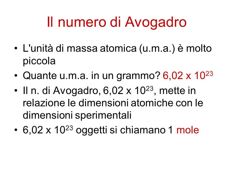 Il numero di Avogadro L unità di massa atomica (u.m.a.) è molto piccola. Quante u.m.a. in un grammo 6,02 x 1023.