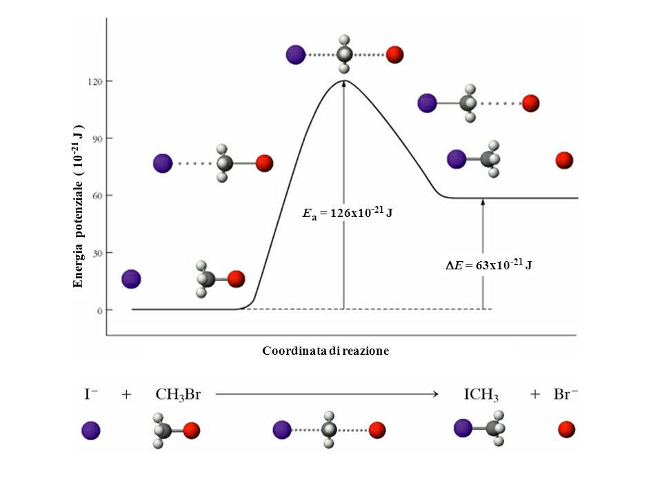 Energia potenziale ( 10-21 J ) Coordinata di reazione