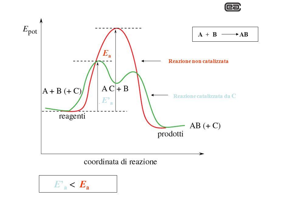 Ea E'a E'a  Ea A + B AB Reazione non catalizzata