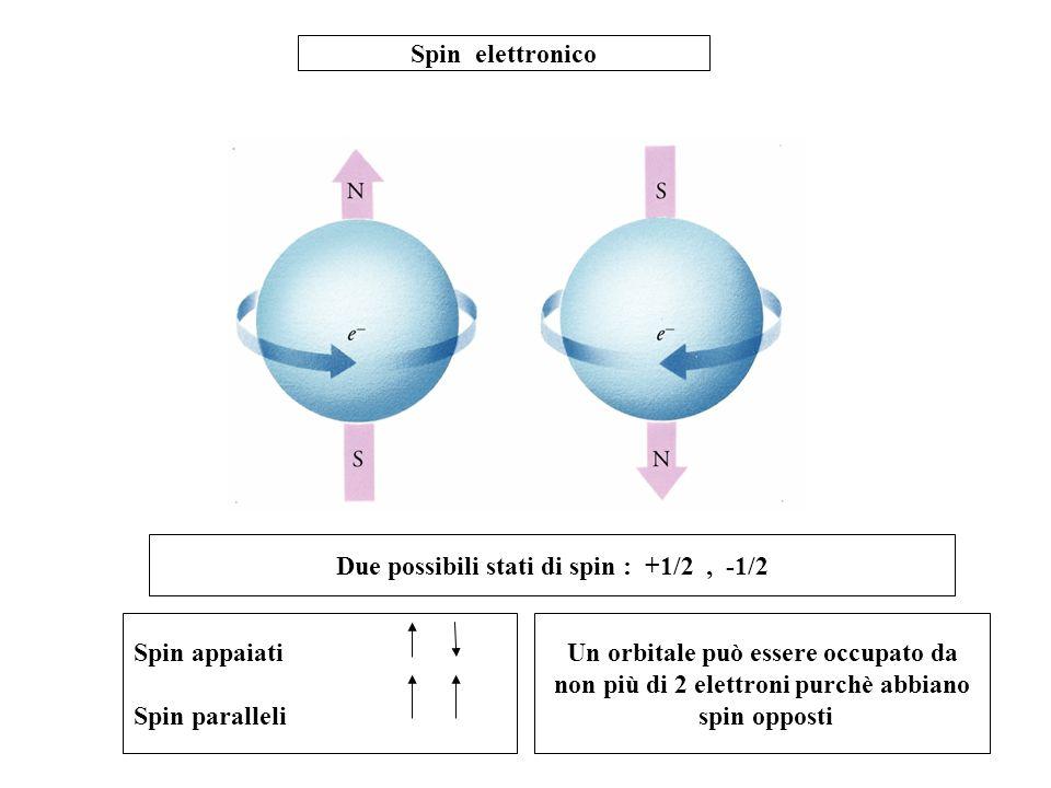 Due possibili stati di spin : +1/2 , -1/2