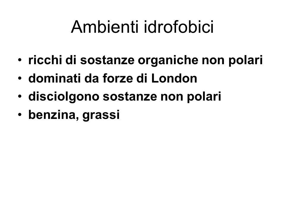 Ambienti idrofobici ricchi di sostanze organiche non polari
