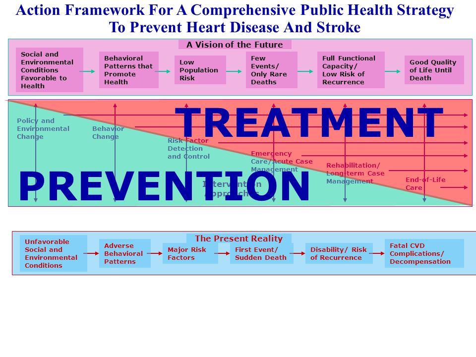 Action Framework For A Comprehensive Public Health Strategy To Prevent Heart Disease And Stroke