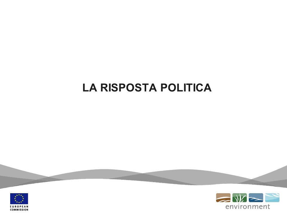 LA RISPOSTA POLITICA