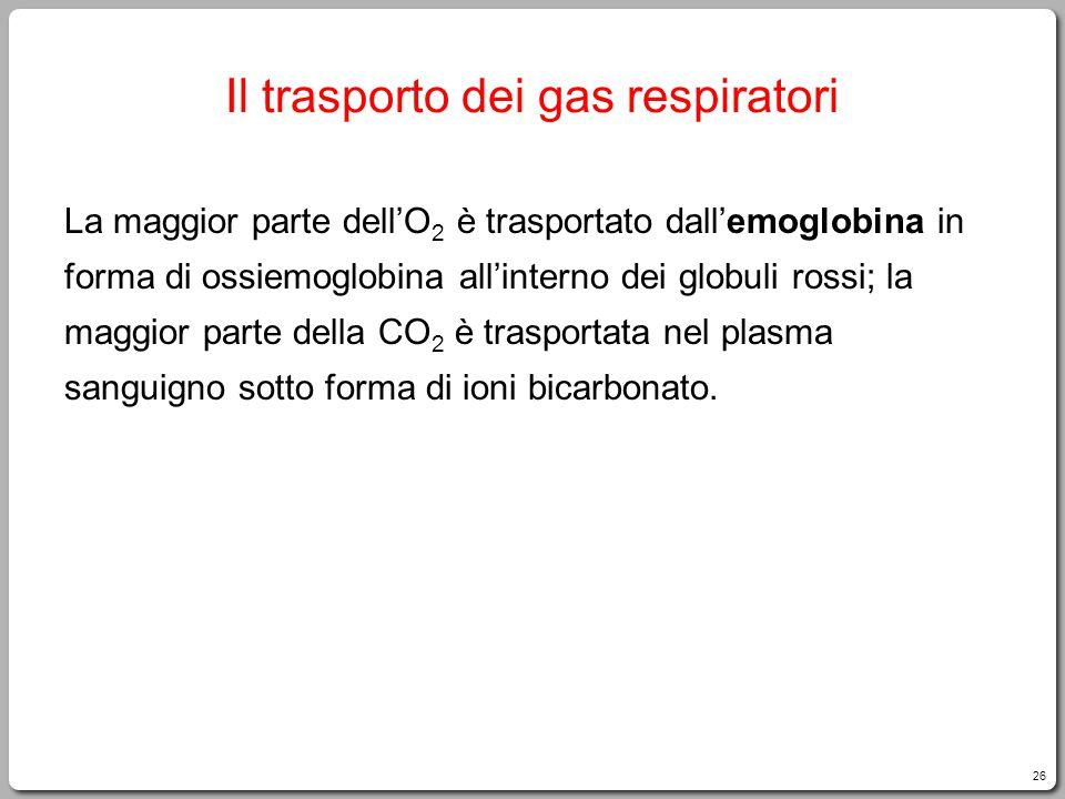 Il trasporto dei gas respiratori