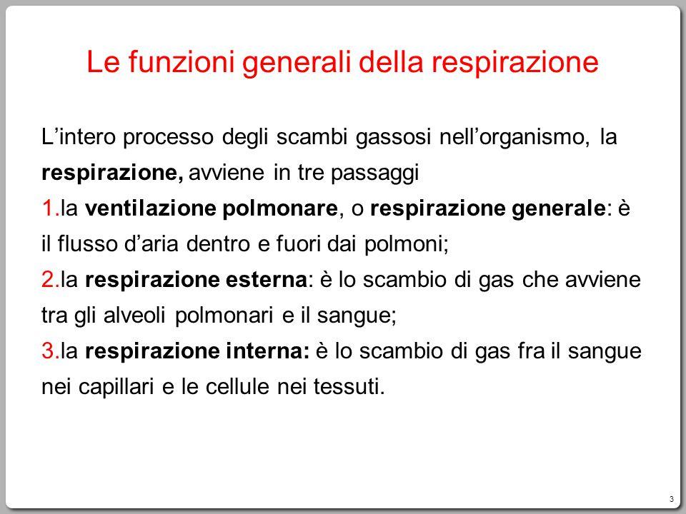 Le funzioni generali della respirazione