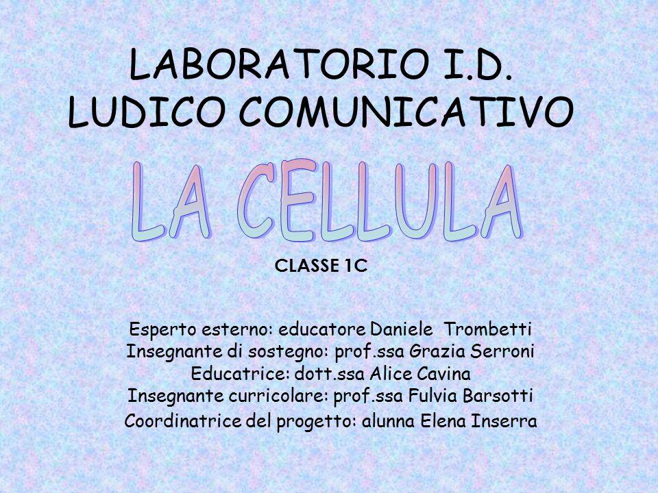 LABORATORIO I.D. LUDICO COMUNICATIVO CLASSE 1C