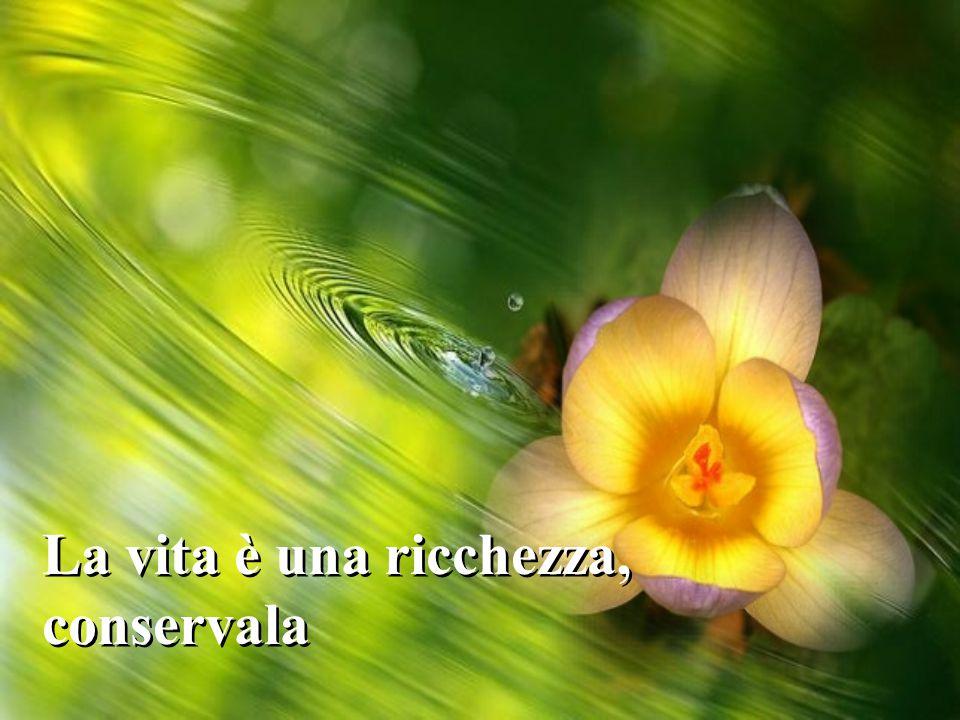 La vita è una ricchezza, conservala