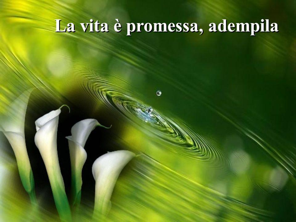 La vita è promessa, adempila