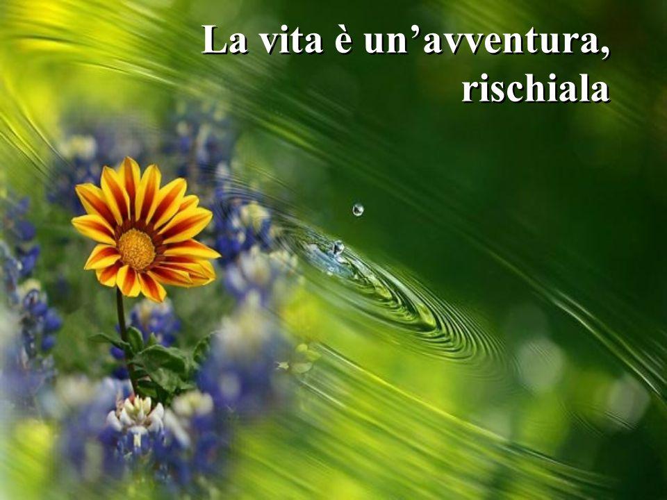 La vita è un'avventura, rischiala