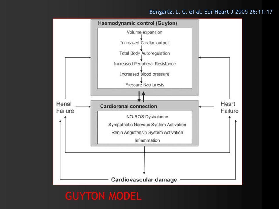 Bongartz, L. G. et al. Eur Heart J 2005 26:11-17