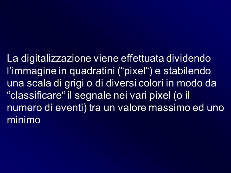 La digitalizzazione viene effettuata dividendo