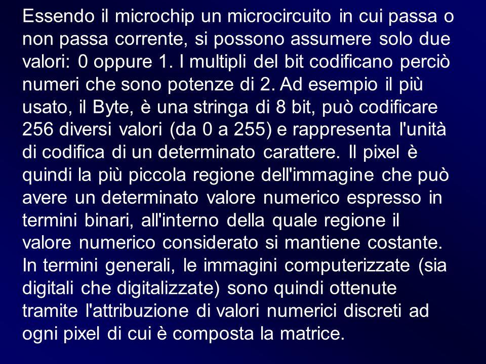 Essendo il microchip un microcircuito in cui passa o non passa corrente, si possono assumere solo due valori: 0 oppure 1.