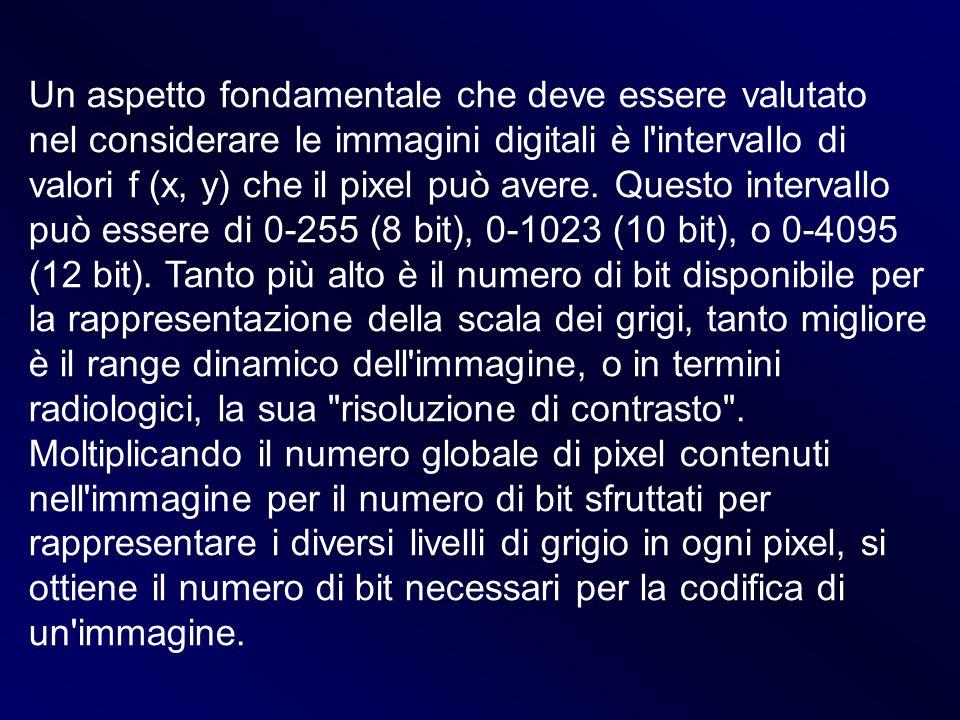 Un aspetto fondamentale che deve essere valutato nel considerare le immagini digitali è l intervallo di valori f (x, y) che il pixel può avere.