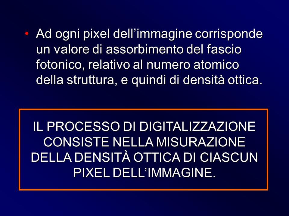 Ad ogni pixel dell'immagine corrisponde un valore di assorbimento del fascio fotonico, relativo al numero atomico della struttura, e quindi di densità ottica.