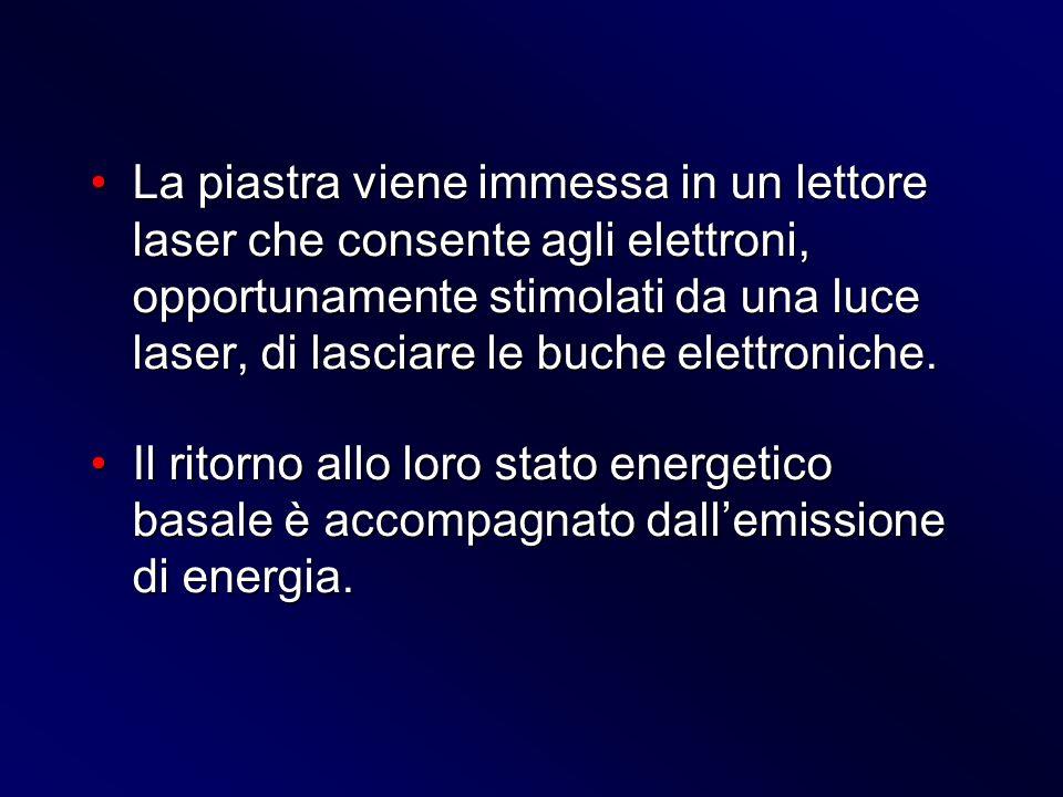 La piastra viene immessa in un lettore laser che consente agli elettroni, opportunamente stimolati da una luce laser, di lasciare le buche elettroniche.