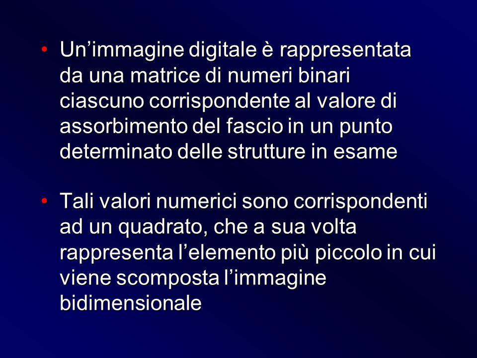 Un'immagine digitale è rappresentata da una matrice di numeri binari ciascuno corrispondente al valore di assorbimento del fascio in un punto determinato delle strutture in esame