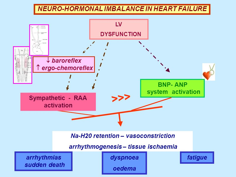 NEURO-HORMONAL IMBALANCE IN HEART FAILURE