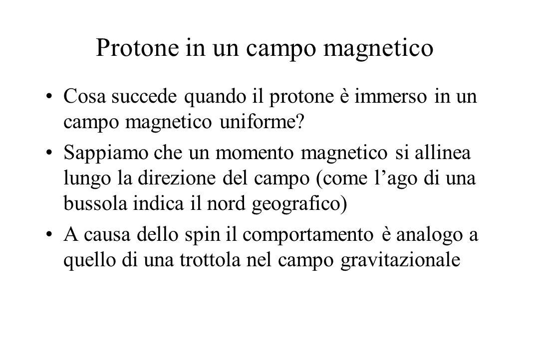 Protone in un campo magnetico