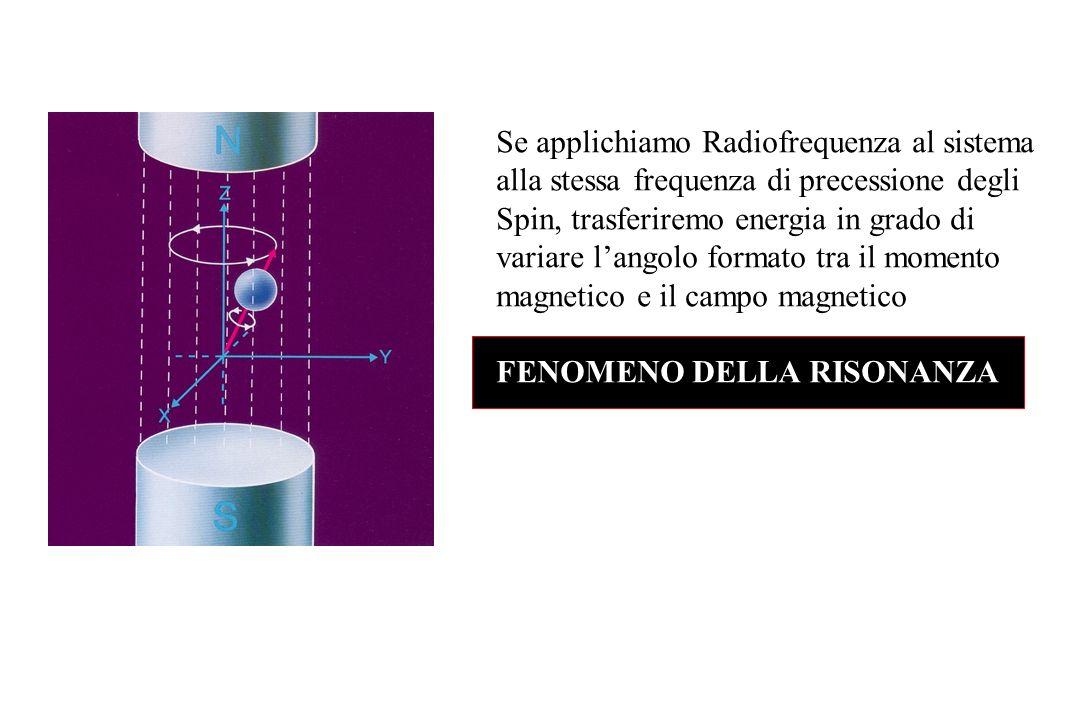 Se applichiamo Radiofrequenza al sistema alla stessa frequenza di precessione degli Spin, trasferiremo energia in grado di variare l'angolo formato tra il momento magnetico e il campo magnetico
