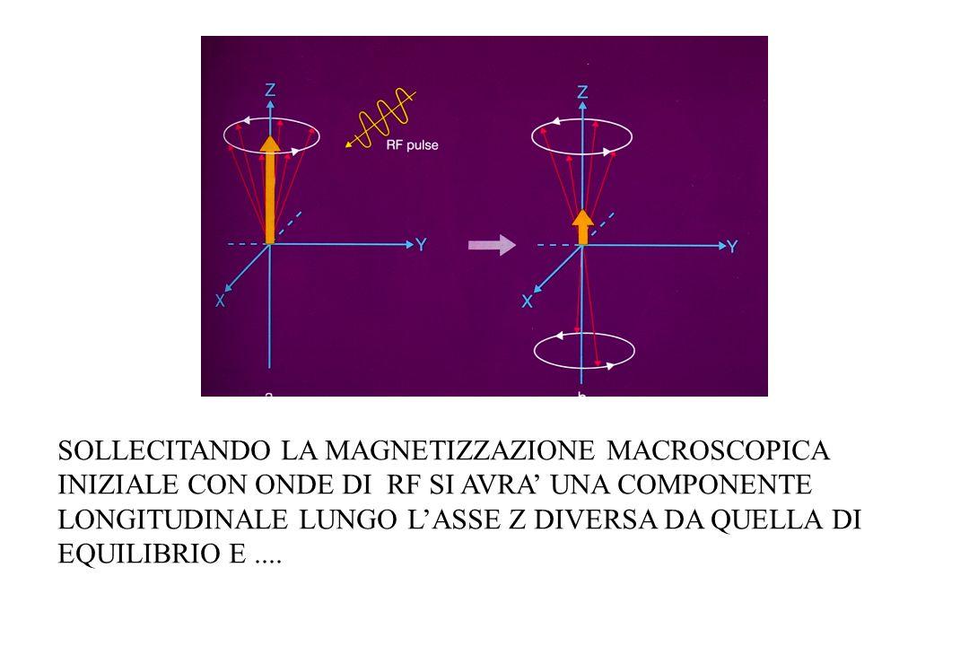 SOLLECITANDO LA MAGNETIZZAZIONE MACROSCOPICA INIZIALE CON ONDE DI RF SI AVRA' UNA COMPONENTE LONGITUDINALE LUNGO L'ASSE Z DIVERSA DA QUELLA DI EQUILIBRIO E ....