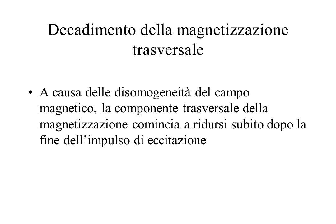 Decadimento della magnetizzazione trasversale