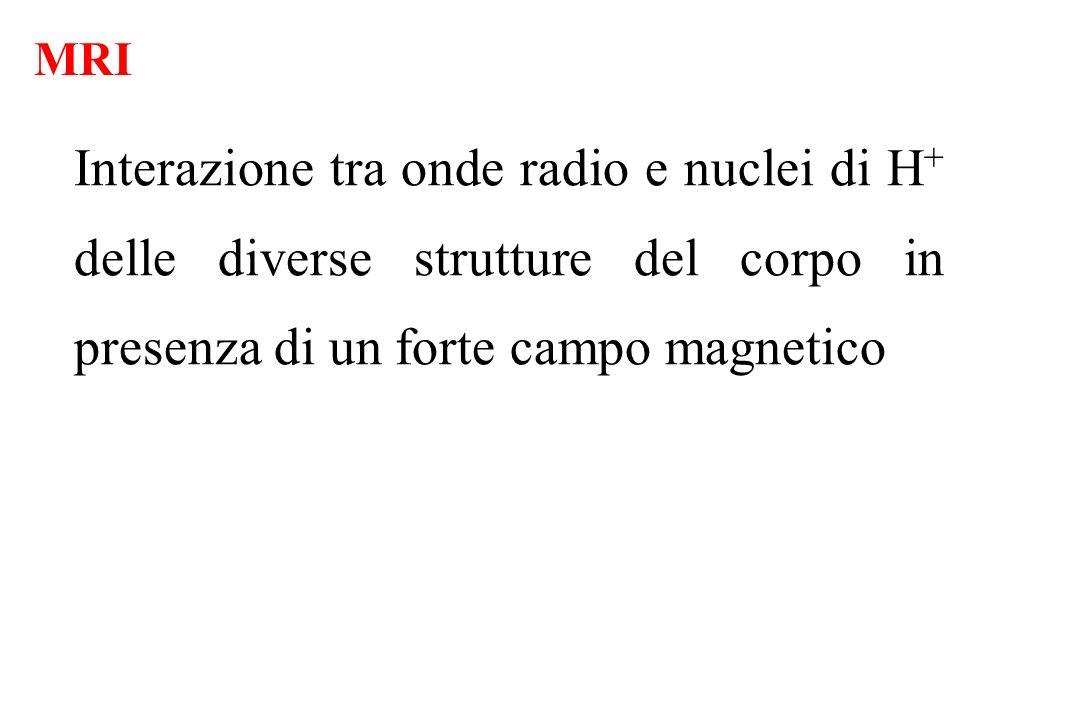 MRI Interazione tra onde radio e nuclei di H+ delle diverse strutture del corpo in presenza di un forte campo magnetico.