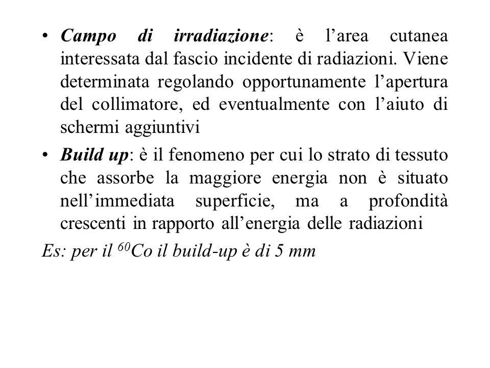 Campo di irradiazione: è l'area cutanea interessata dal fascio incidente di radiazioni. Viene determinata regolando opportunamente l'apertura del collimatore, ed eventualmente con l'aiuto di schermi aggiuntivi