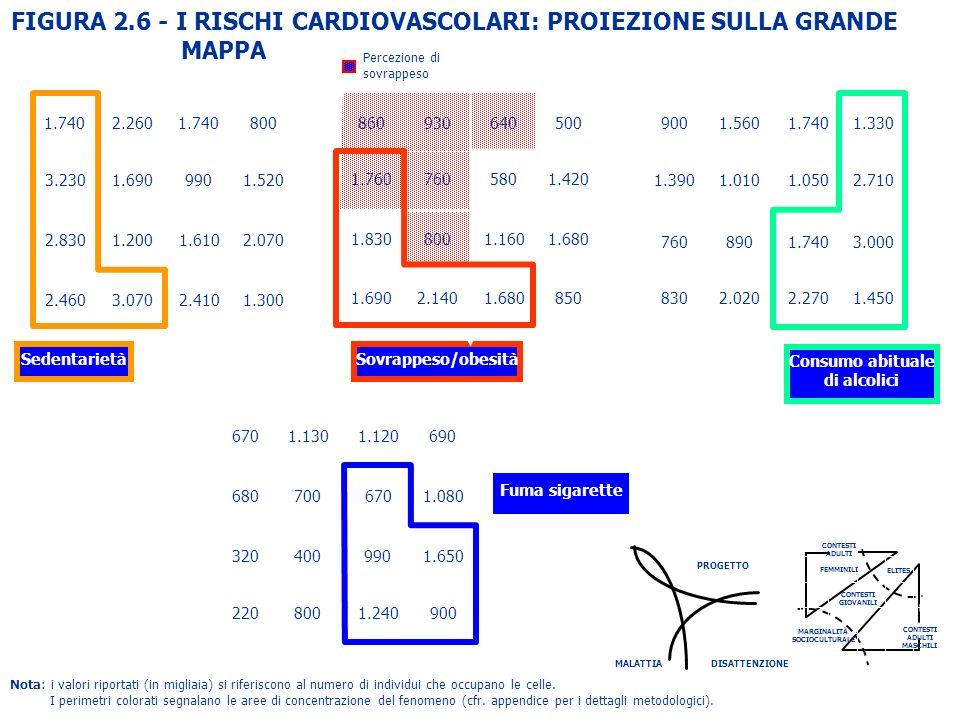 FIGURA 2.6 - I RISCHI CARDIOVASCOLARI: PROIEZIONE SULLA GRANDE MAPPA