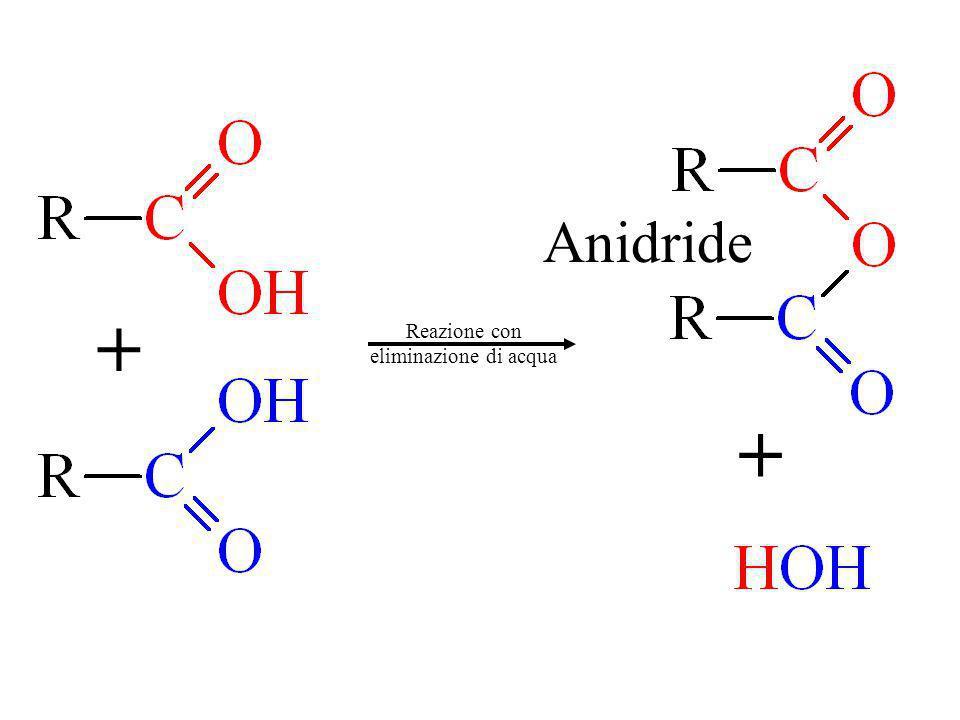 Anidride + Reazione con eliminazione di acqua +