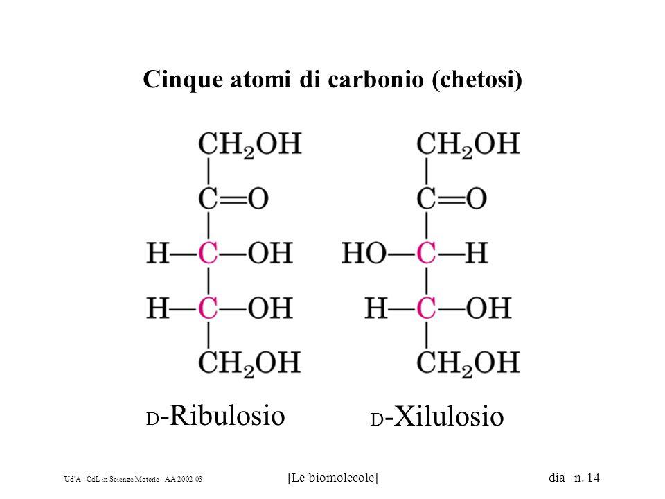 Cinque atomi di carbonio (chetosi)