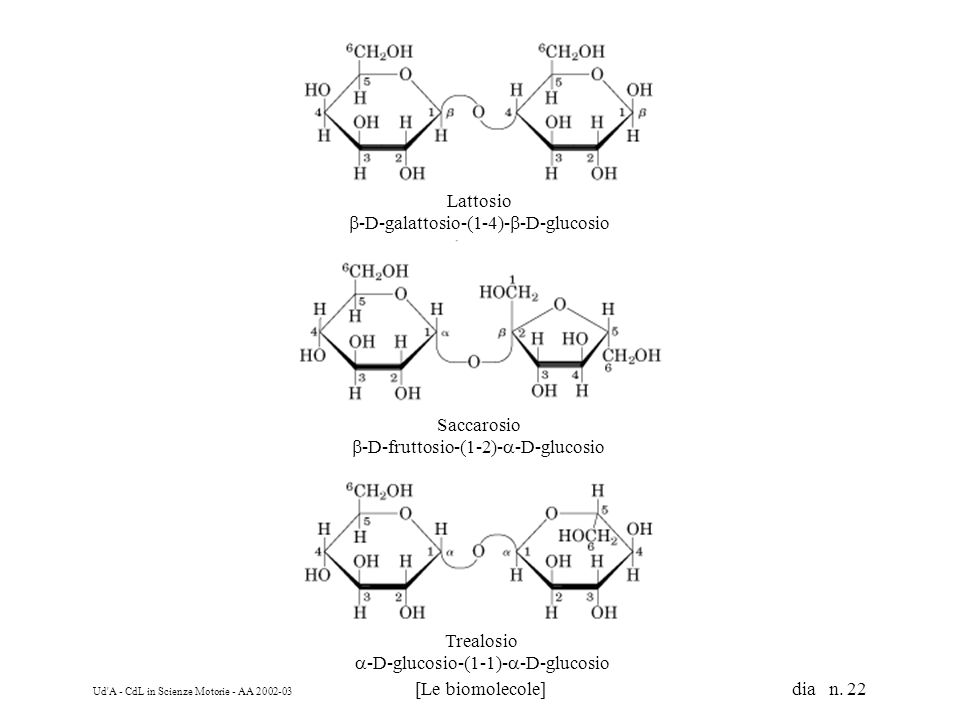 b-D-galattosio-(1-4)-b-D-glucosio