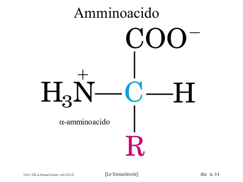 Amminoacido a-amminoacido