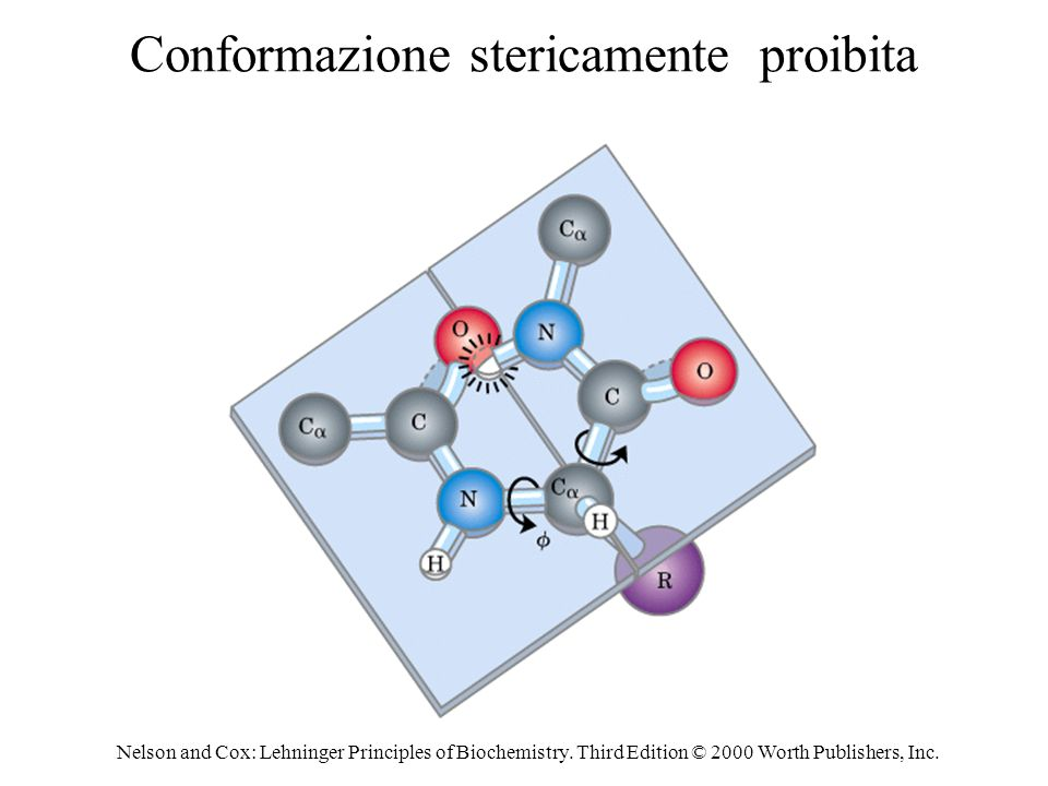 Conformazione stericamente proibita
