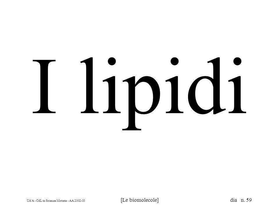 I lipidi