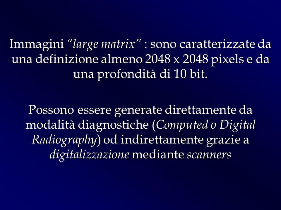 Immagini large matrix : sono caratterizzate da una definizione almeno 2048 x 2048 pixels e da una profondità di 10 bit.