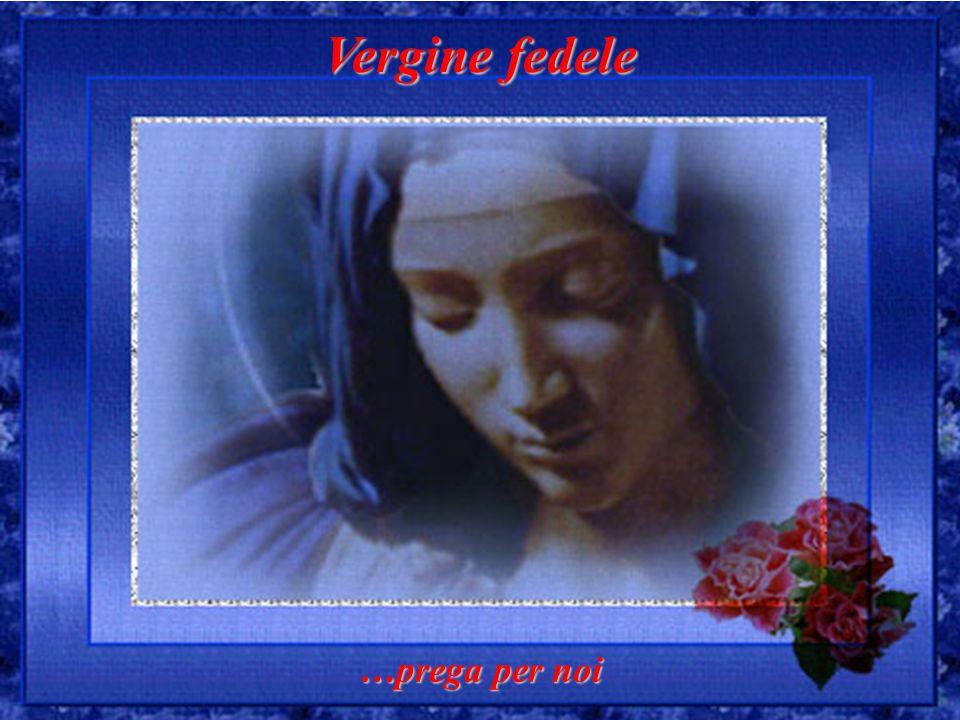 Vergine fedele …prega per noi