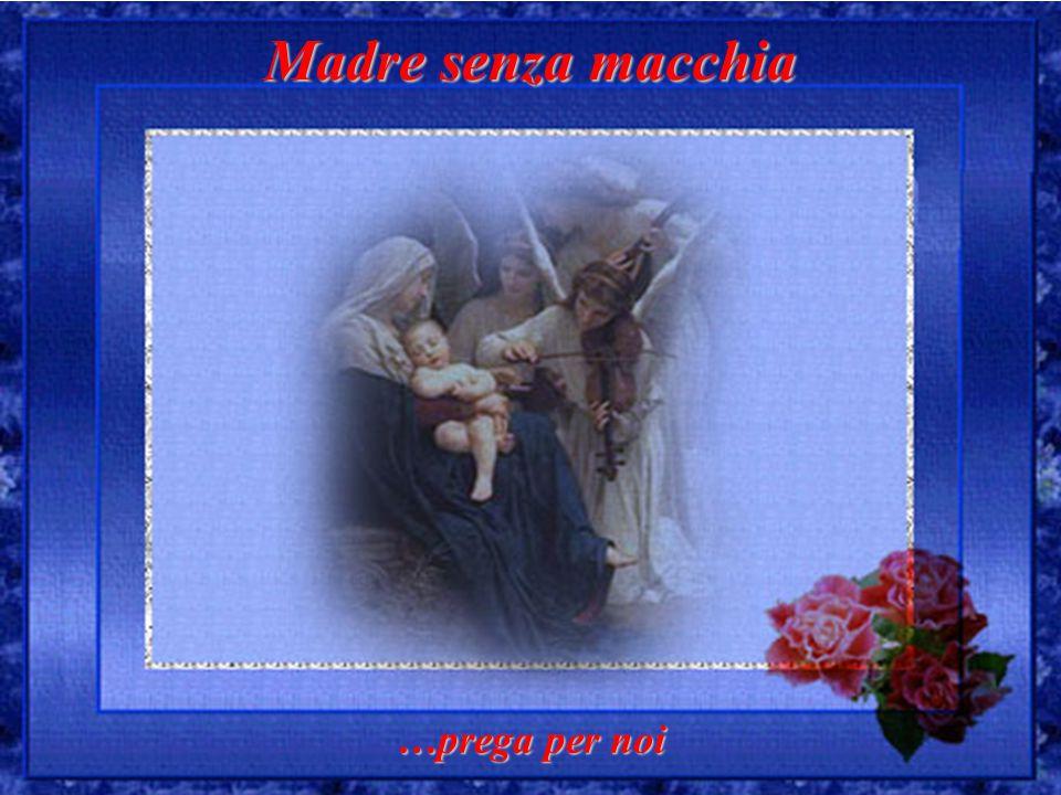 Madre senza macchia …prega per noi