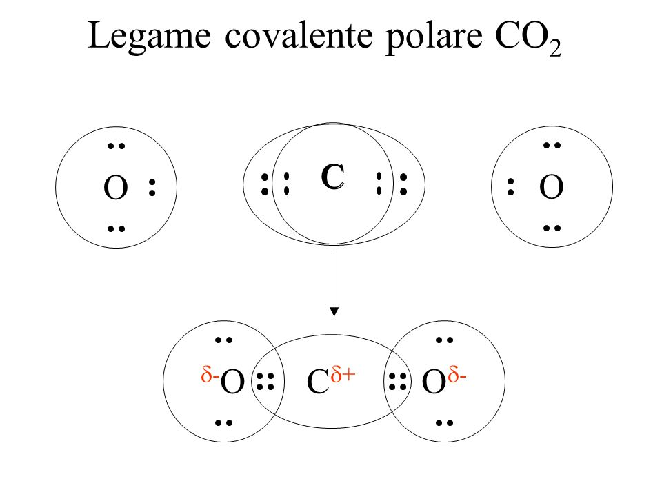 Legame covalente polare CO2
