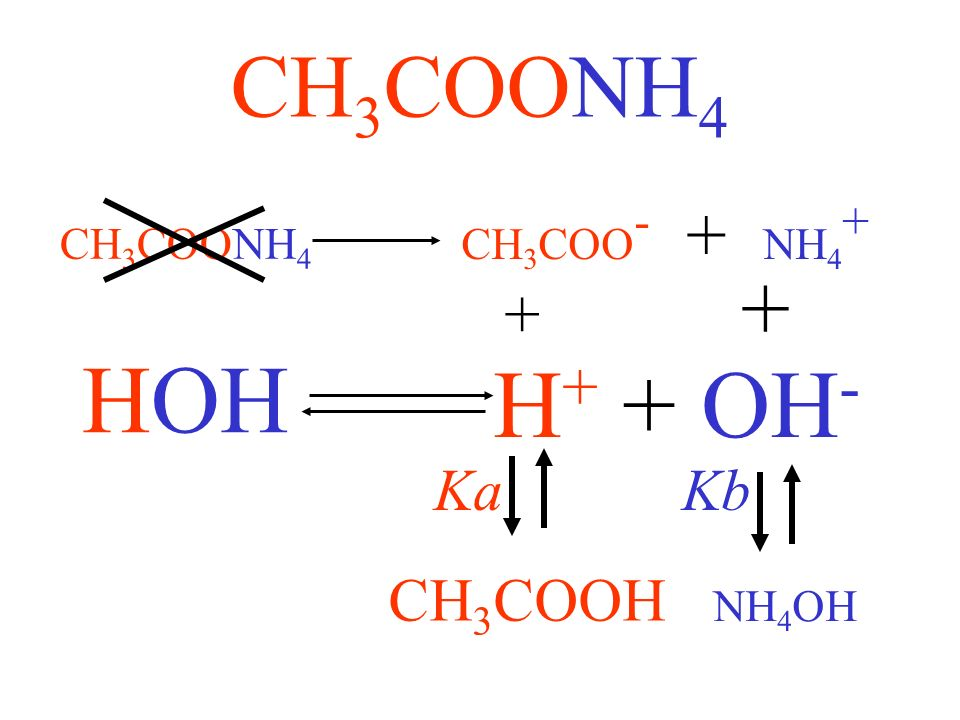 HOH H+ + OH- CH3COONH4 + + CH3COOH Ka Kb CH3COO- + NH4+ CH3COONH4