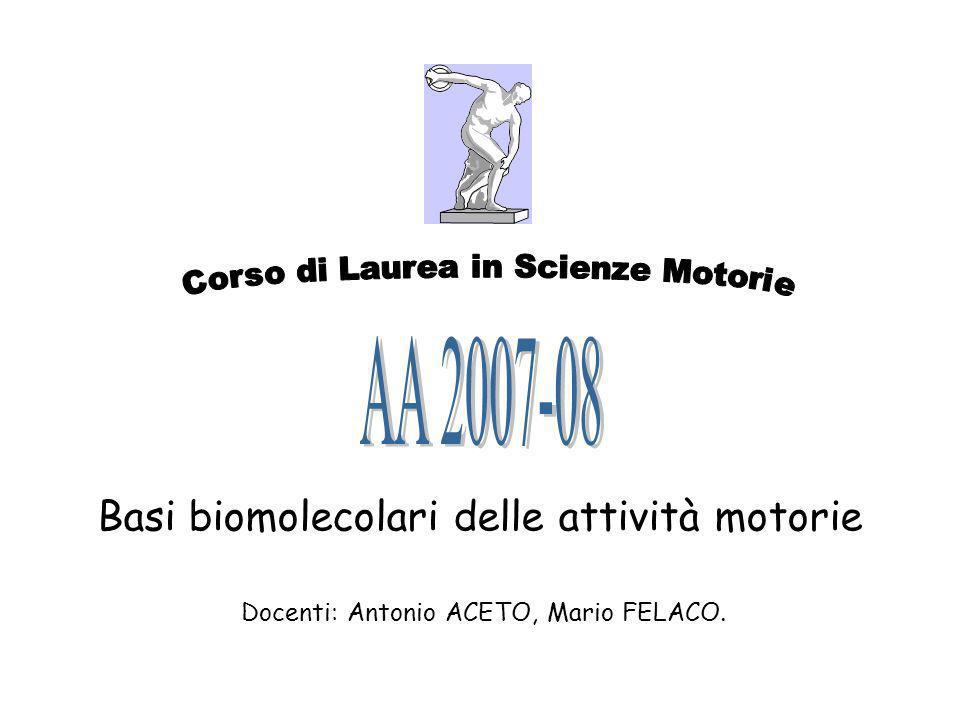 Basi biomolecolari delle attività motorie