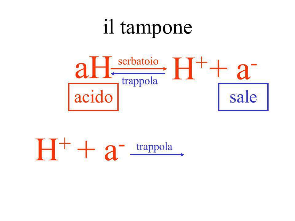 il tampone aH serbatoio + a- H+ trappola acido sale + a- H+ trappola