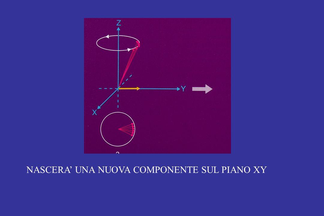 NASCERA' UNA NUOVA COMPONENTE SUL PIANO XY