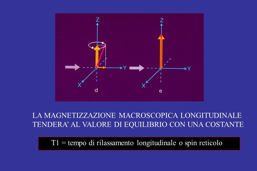 LA MAGNETIZZAZIONE MACROSCOPICA LONGITUDINALE TENDERA' AL VALORE DI EQUILIBRIO CON UNA COSTANTE