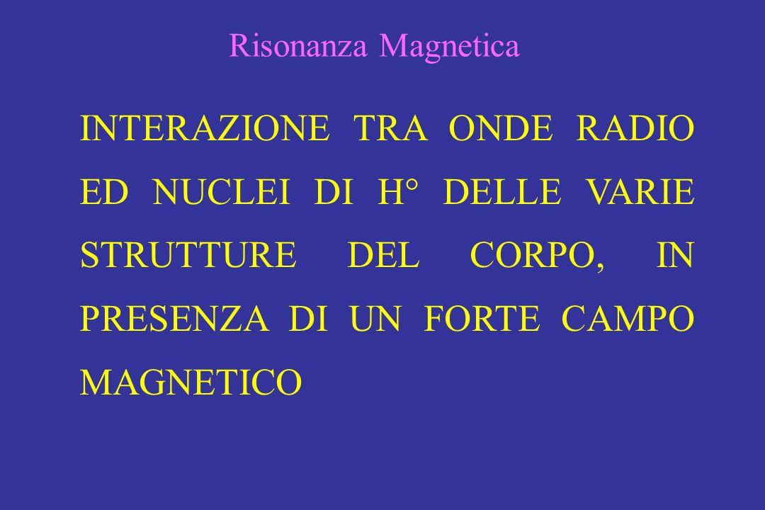 Risonanza Magnetica INTERAZIONE TRA ONDE RADIO ED NUCLEI DI H° DELLE VARIE STRUTTURE DEL CORPO, IN PRESENZA DI UN FORTE CAMPO MAGNETICO.