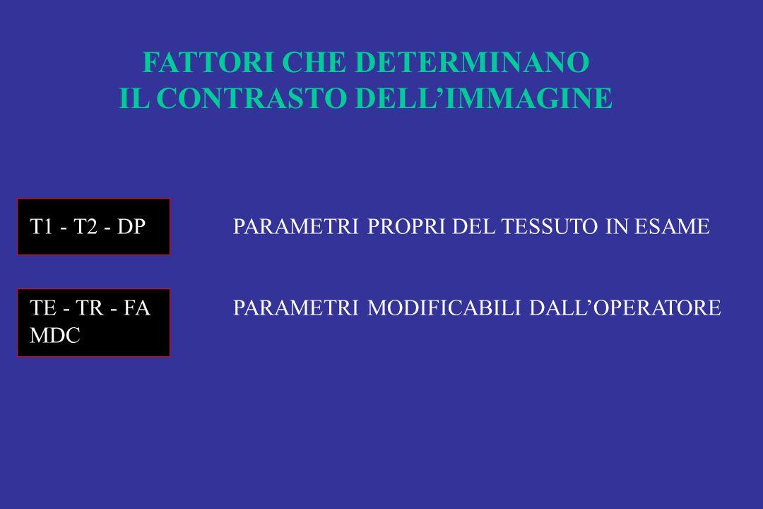 FATTORI CHE DETERMINANO IL CONTRASTO DELL'IMMAGINE